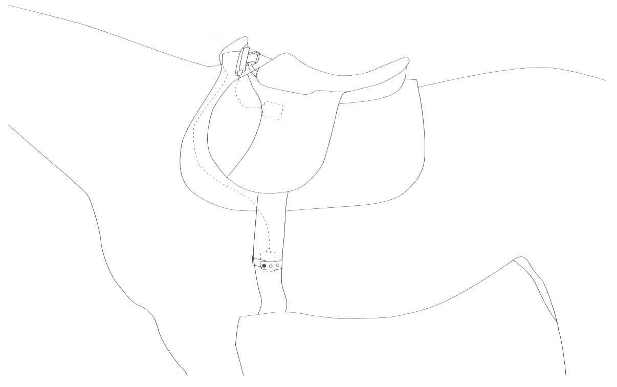 Hartslagmeter paard: bevestiging Polar Equine elektroden