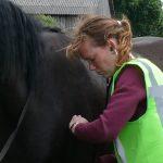 hartslagmeter paard rusthartslag gezondheid