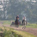 hartslagmeter paard conditie test